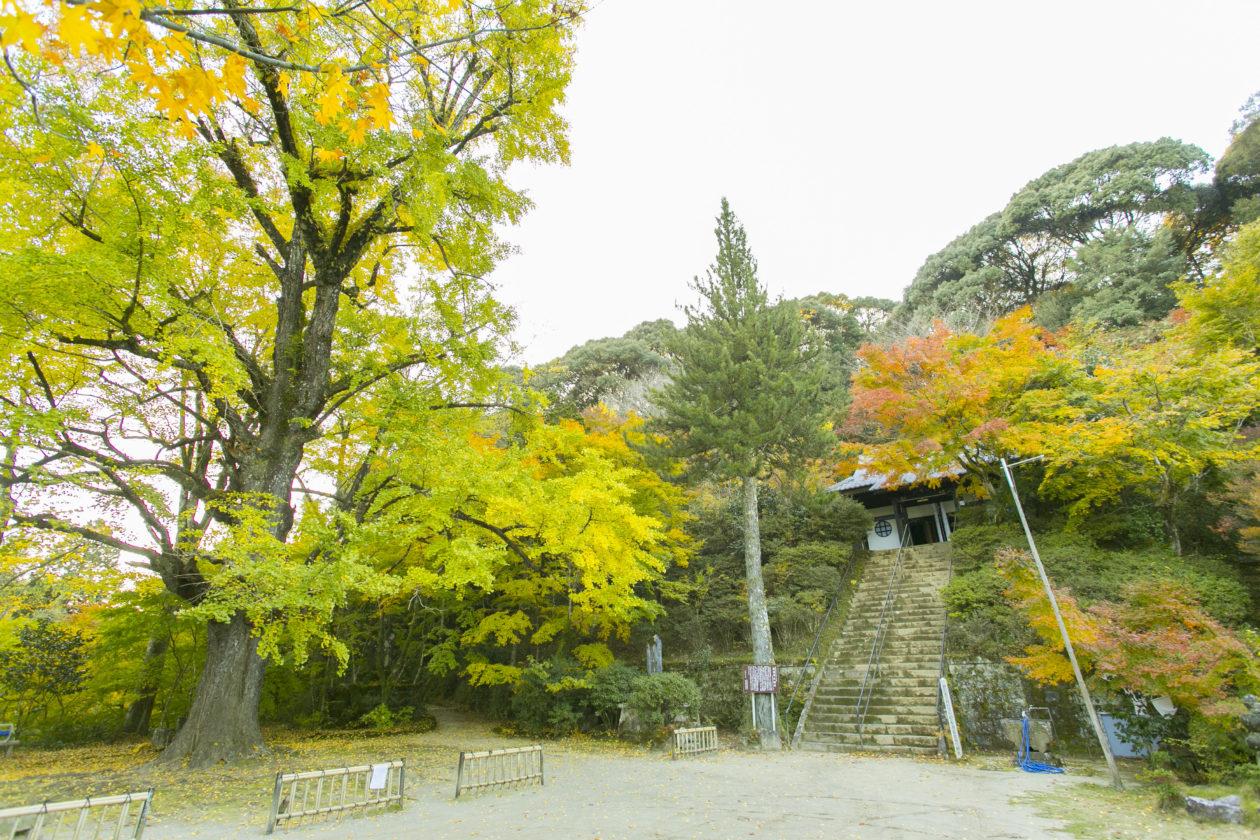 日本最南端黄檗宗 新宮禅寺散策