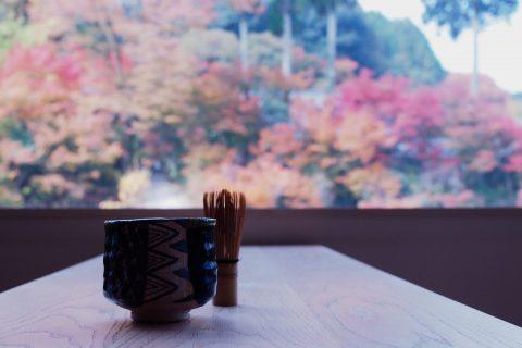 紅葉と抹茶と。