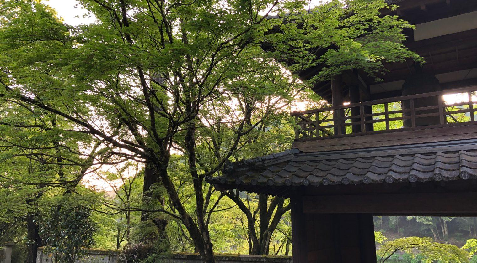 本日 朝の坐禅会